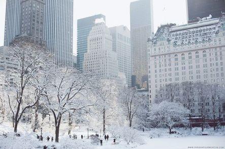 New York Winter 1