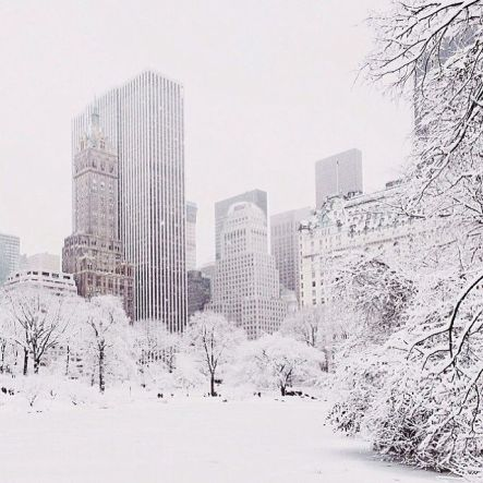 New York Winter 3