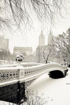 New York Winter 4