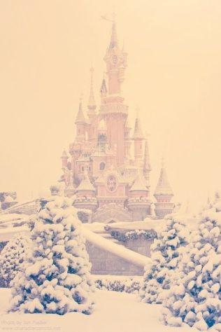 Paris Winter 3