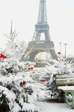 Paris Winter 4