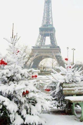 Paris Winter 4