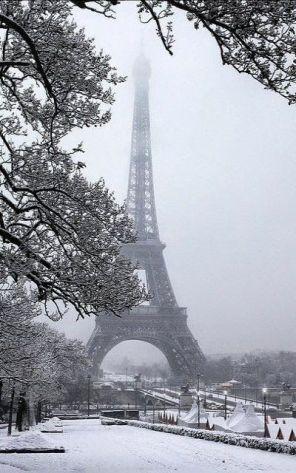 Paris Winter 6