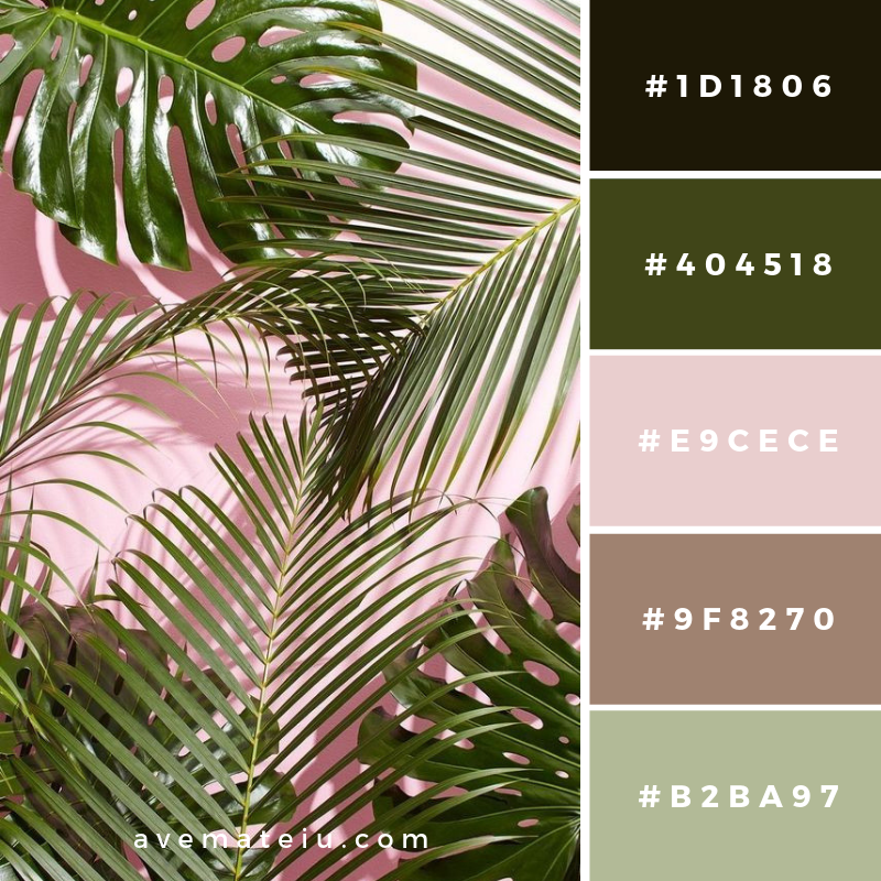 New Color Pallete on avemateiu.com: Color Palette 13 🎨 • • • #avemateiucolors #avemateiu #love #design #photos #designinspiration #designer #graphicdesign #colorinspiration #colors #instaphoto #colorpalette #moodboard #creative #instaart #colorgrading #brandidentity #artistsoninstagram #artwork #inspirationoftheday #fineart #branding #succes #beautiful #instadaily #bestoftheday #photooftheday #inspirational #colorful #avemateiudesign