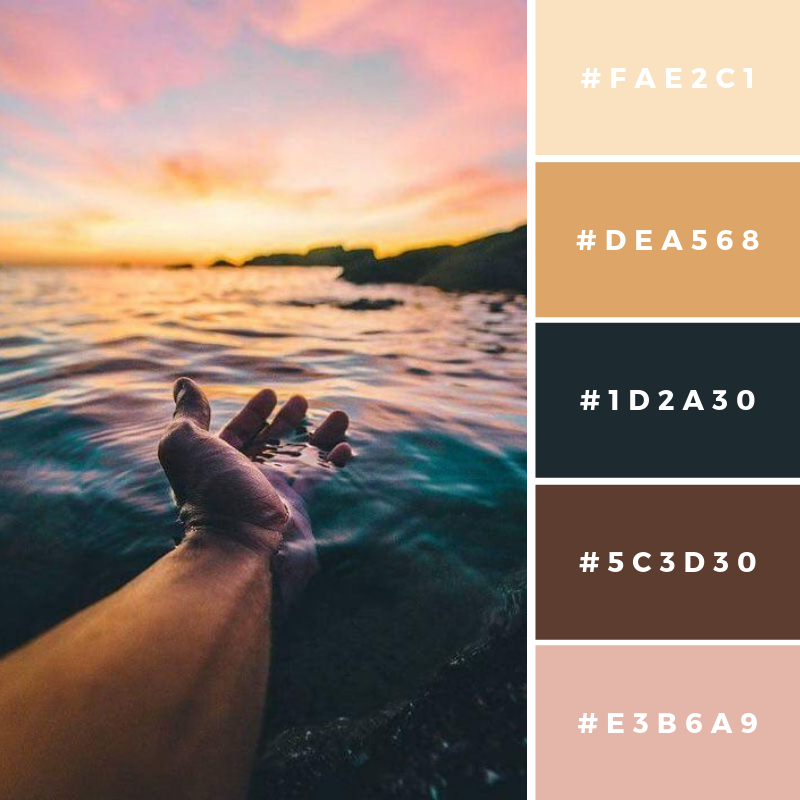 New Color Pallete on avemateiu.com: Color Palette 2 🎨 • • • #avemateiucolors #avemateiu #love #design #photos #designinspiration #designer #graphicdesign #colorinspiration #colors #instaphoto #colorpalette #moodboard #creative #instaart #colorgrading #brandidentity #artistsoninstagram #artwork #inspirationoftheday #fineart #branding #succes #beautiful #instadaily #bestoftheday #photooftheday #inspirational #colorful #avemateiudesign