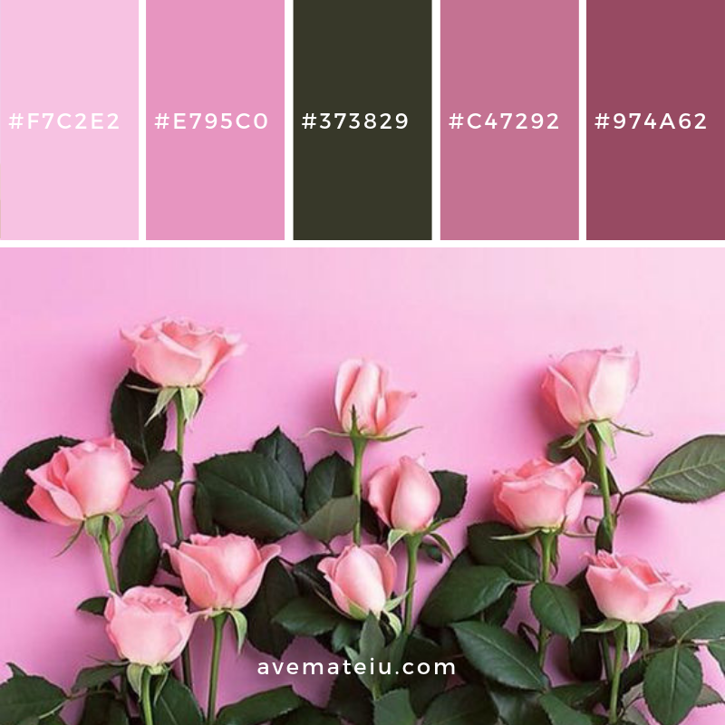 New Color Pallete on avemateiu.com: Color Palette 5 🎨 • • • #avemateiucolors #avemateiu #love #design #photos #designinspiration #designer #graphicdesign #colorinspiration #colors #instaphoto #colorpalette #moodboard #creative #instaart #colorgrading #brandidentity #artistsoninstagram #artwork #inspirationoftheday #fineart #branding #succes #beautiful #instadaily #bestoftheday #photooftheday #inspirational #colorful #avemateiudesign