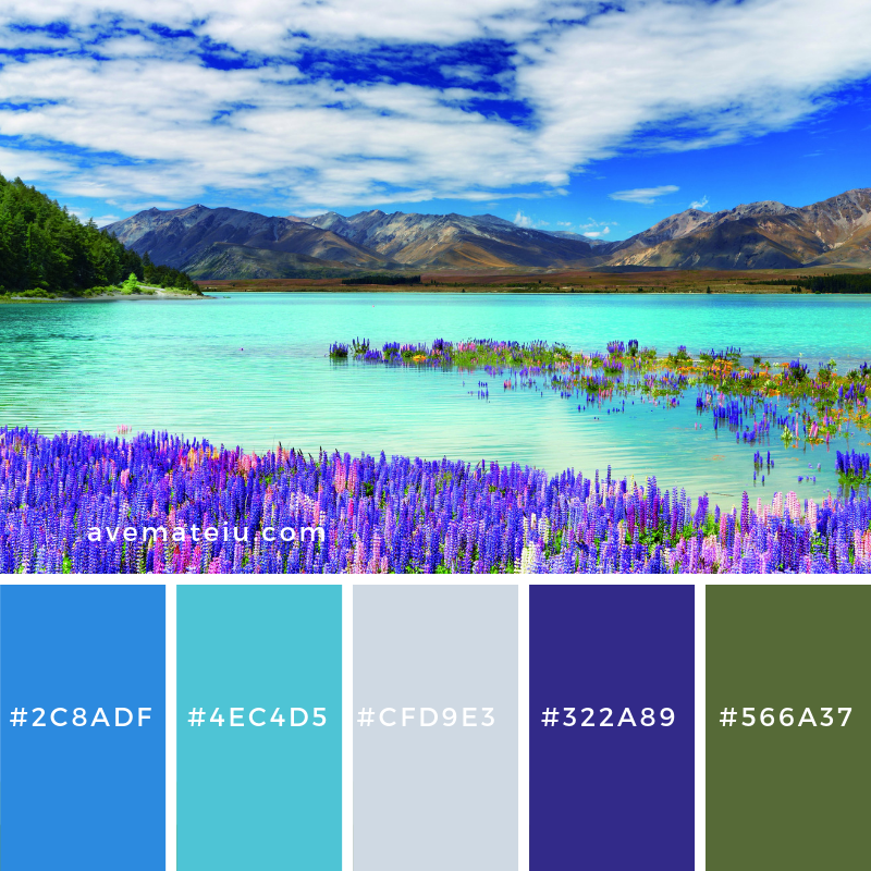 New Color Pallete on avemateiu.com: Color Palette 6 🎨 • • • #avemateiucolors #avemateiu #love #design #photos #designinspiration #designer #graphicdesign #colorinspiration #colors #instaphoto #colorpalette #moodboard #creative #instaart #colorgrading #brandidentity #artistsoninstagram #artwork #inspirationoftheday #fineart #branding #succes #beautiful #instadaily #bestoftheday #photooftheday #inspirational #colorful #avemateiudesign