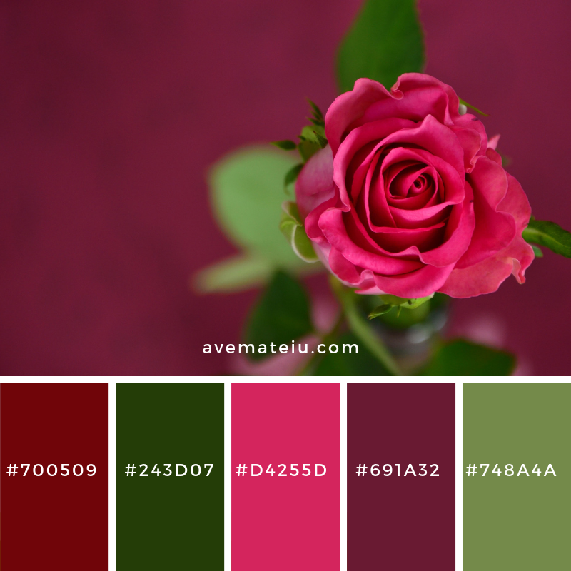 New Color Pallete on avemateiu.com: Color Palette 8 🎨 • • • #avemateiucolors #avemateiu #love #design #photos #designinspiration #designer #graphicdesign #colorinspiration #colors #instaphoto #colorpalette #moodboard #creative #instaart #colorgrading #brandidentity #artistsoninstagram #artwork #inspirationoftheday #fineart #branding #succes #beautiful #instadaily #bestoftheday #photooftheday #inspirational #colorful #avemateiudesign