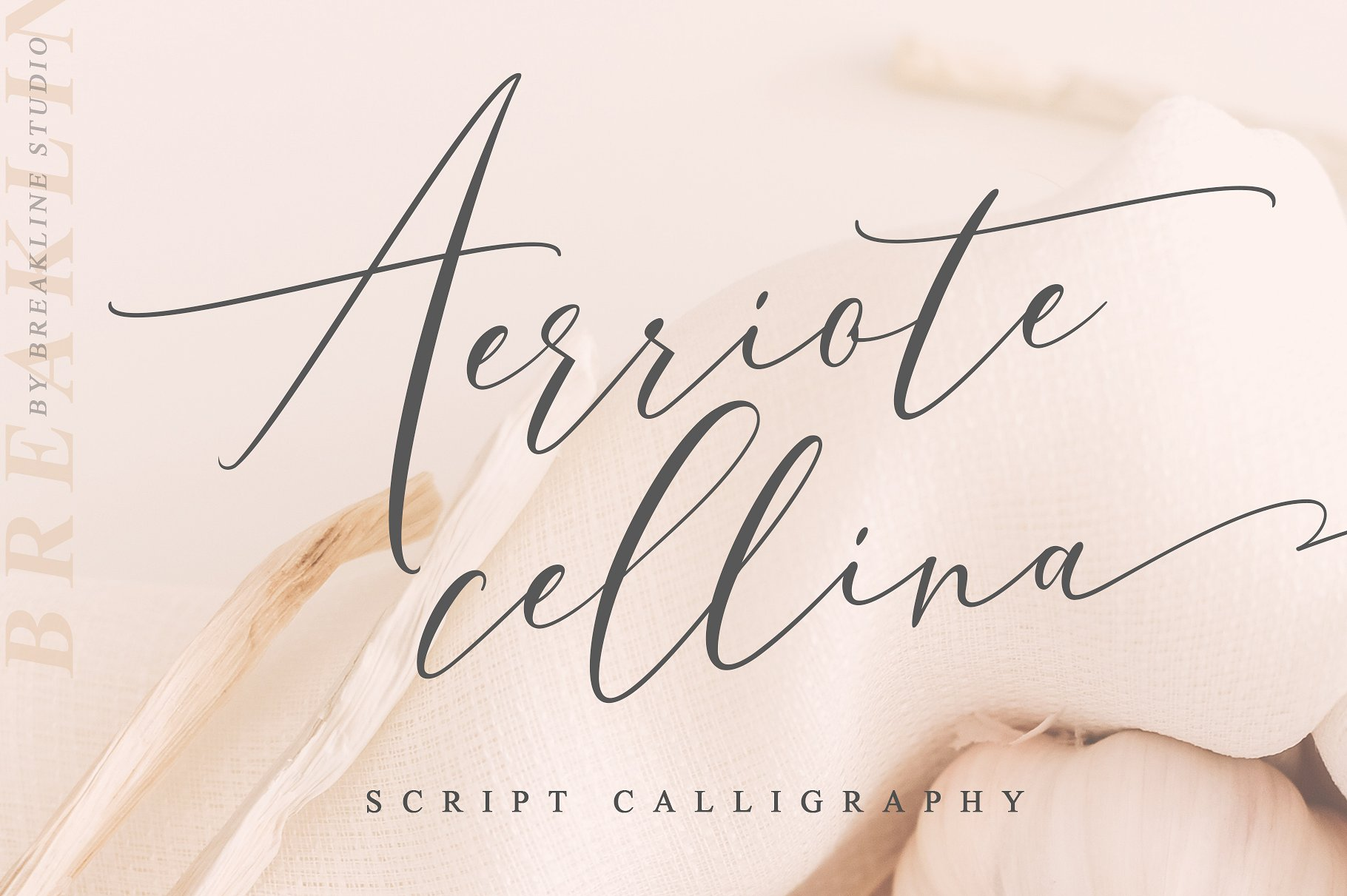 "Aerriote Cellina Introducing Aerriote Cellina, A new fresh & modern classic script with a handmade calligraphy style. The impression is classic, yet modern, making ""Aerriote Cellina"" still catchy for all your creativity. A charming typeface and So beautiful on the invitation like greeting cards, branding materials, business cards, quotes, posters, and more! Buy Now $15"