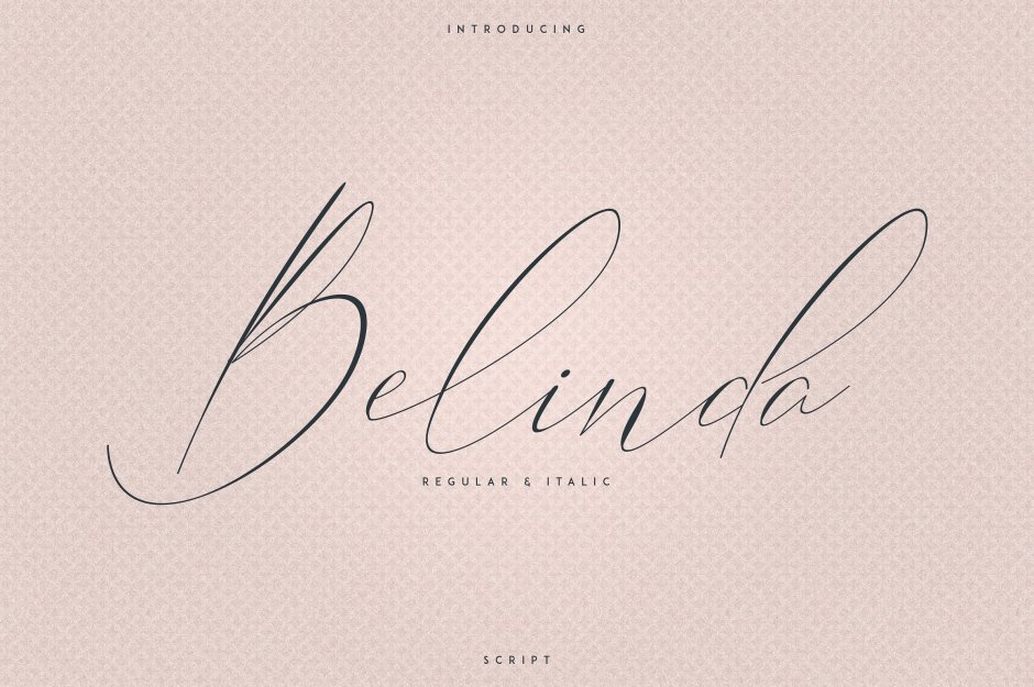 Belinda Script - Regular and Italic Belinda is an elegant, clean font with regular, italic styles and multilingual support. It's a very versatile font that works great in large and small sizes. Belinda is perfect for branding projects, home-ware designs, product packaging, magazine headers - or simply as a stylish text overlay to any background image. Buy Now $15