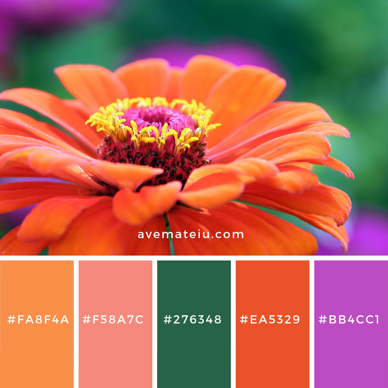 New Color Pallete on avemateiu.com: Color Palette 18 🎨 • • • #avemateiucolors #avemateiu #love #design #photos #designinspiration #designer #graphicdesign #colorinspiration #colors #instaphoto #colorpalette #moodboard #creative #instaart #colorgrading #brandidentity #artistsoninstagram #artwork #inspirationoftheday #fineart #branding #succes #beautiful #instadaily #bestoftheday #photooftheday #inspirational #colorful #avemateiudesign