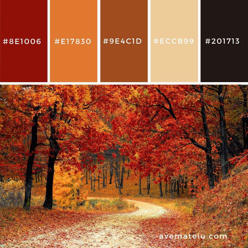 New Color Pallete on avemateiu.com: Color Palette 20 🎨 • • • #avemateiucolors #avemateiu #love #design #photos #designinspiration #designer #graphicdesign #colorinspiration #colors #instaphoto #colorpalette #moodboard #creative #instaart #colorgrading #brandidentity #artistsoninstagram #artwork #inspirationoftheday #fineart #branding #succes #beautiful #instadaily #bestoftheday #photooftheday #inspirational #colorful #avemateiudesign