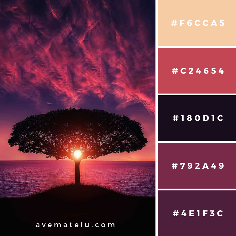 New Color Pallete on avemateiu.com: Color Palette 21 🎨 • • • #avemateiucolors #avemateiu #love #design #photos #designinspiration #designer #graphicdesign #colorinspiration #colors #instaphoto #colorpalette #moodboard #creative #instaart #colorgrading #brandidentity #artistsoninstagram #artwork #inspirationoftheday #fineart #branding #succes #beautiful #instadaily #bestoftheday #photooftheday #inspirational #colorful #avemateiudesign