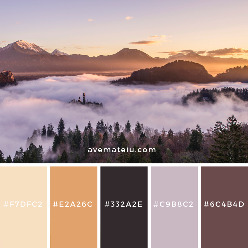 New Color Pallete on avemateiu.com: Color Palette 26 🎨 • • • #avemateiucolors #avemateiu #love #design #photos #designinspiration #designer #graphicdesign #colorinspiration #colors #instaphoto #colorpalette #moodboard #creative #instaart #colorgrading #brandidentity #artistsoninstagram #artwork #inspirationoftheday #fineart #branding #succes #beautiful #instadaily #bestoftheday #photooftheday #inspirational #colorful #avemateiudesign