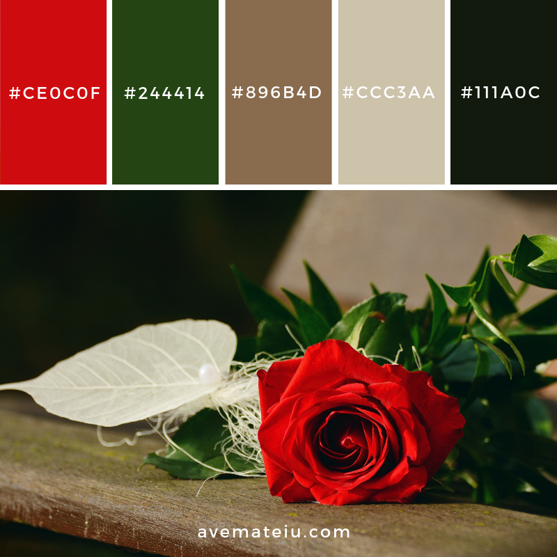 New Color Pallete on avemateiu.com: Color Palette 28 🎨 • • • #avemateiucolors #avemateiu #love #design #photos #designinspiration #designer #graphicdesign #colorinspiration #colors #instaphoto #colorpalette #moodboard #creative #instaart #colorgrading #brandidentity #artistsoninstagram #artwork #inspirationoftheday #fineart #branding #succes #beautiful #instadaily #bestoftheday #photooftheday #inspirational #colorful #avemateiudesign