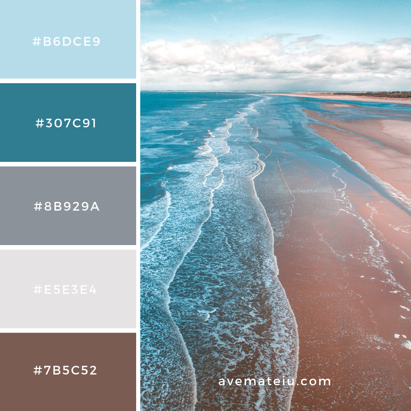 New Color Pallete on avemateiu.com: Color Palette 31 🎨 • • • #avemateiucolors #avemateiu #love #design #photos #designinspiration #designer #graphicdesign #colorinspiration #colors #instaphoto #colorpalette #moodboard #creative #instaart #colorgrading #brandidentity #artistsoninstagram #artwork #inspirationoftheday #fineart #branding #succes #beautiful #instadaily #bestoftheday #photooftheday #inspirational #colorful #avemateiudesign