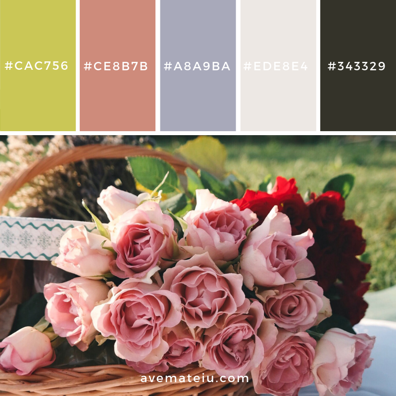 New Color Pallete on avemateiu.com: Color Palette 32 🎨 • • • #avemateiucolors #avemateiu #love #design #photos #designinspiration #designer #graphicdesign #colorinspiration #colors #instaphoto #colorpalette #moodboard #creative #instaart #colorgrading #brandidentity #artistsoninstagram #artwork #inspirationoftheday #fineart #branding #succes #beautiful #instadaily #bestoftheday #photooftheday #inspirational #colorful #avemateiudesign