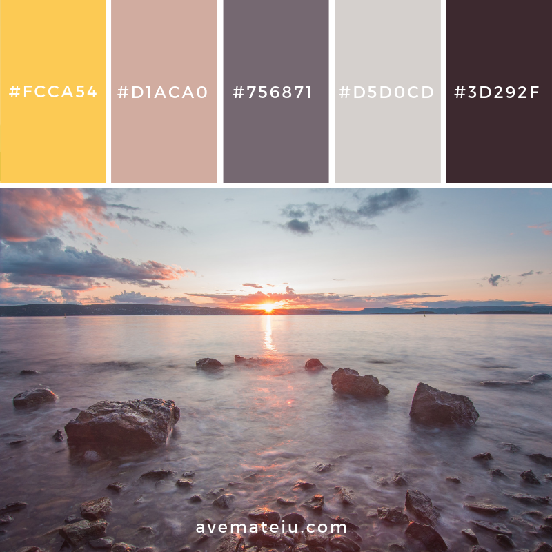New Color Pallete on avemateiu.com: Color Palette 44 🎨 • • • #avemateiucolors #avemateiu #love #design #photos #designinspiration #designer #graphicdesign #colorinspiration #colors #instaphoto #colorpalette #moodboard #creative #instaart #colorgrading #brandidentity #artistsoninstagram #artwork #inspirationoftheday #fineart #branding #succes #beautiful #instadaily #bestoftheday #photooftheday #inspirational #colorful #avemateiudesign