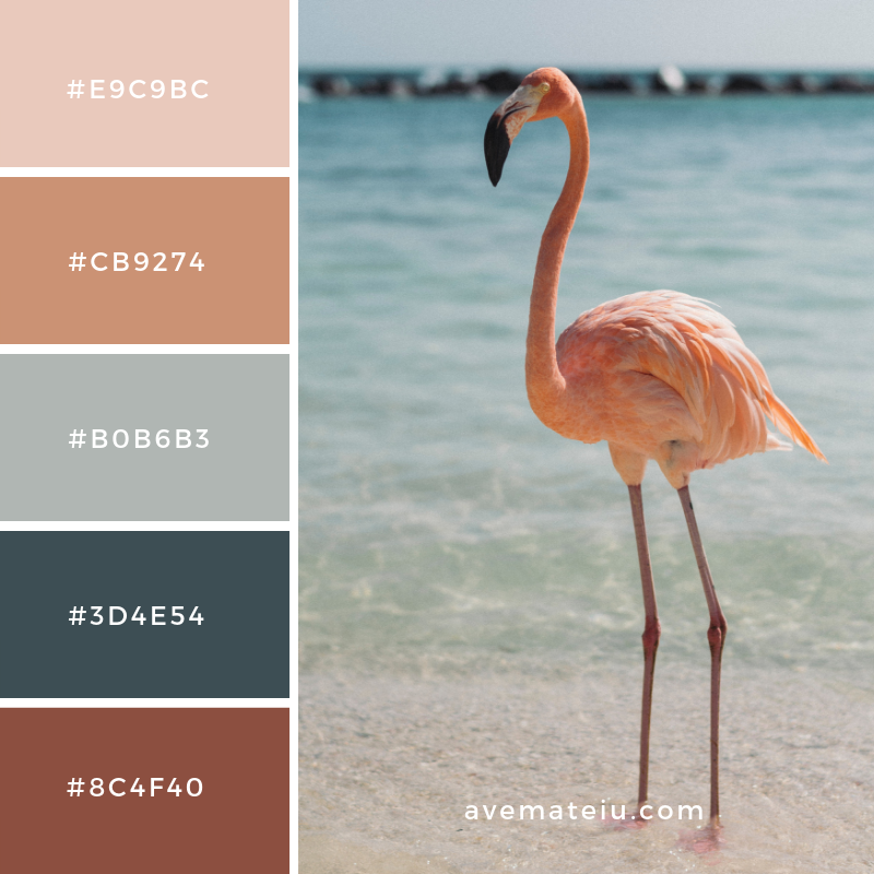 New Color Pallete on avemateiu.com: Color Palette 47 🎨 • • • #avemateiucolors #avemateiu #love #design #photos #designinspiration #designer #graphicdesign #colorinspiration #colors #instaphoto #colorpalette #moodboard #creative #instaart #colorgrading #brandidentity #artistsoninstagram #artwork #inspirationoftheday #fineart #branding #succes #beautiful #instadaily #bestoftheday #photooftheday #inspirational #colorful #avemateiudesign