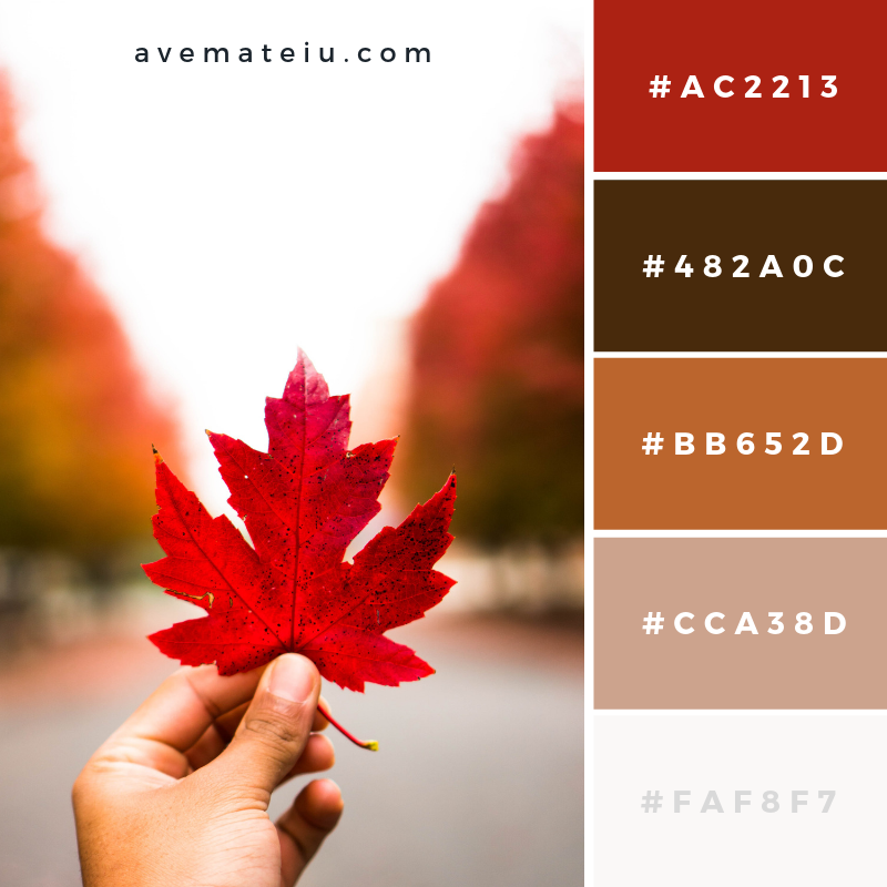 New Color Pallete on avemateiu.com: Color Palette 49 🎨 • • • #avemateiucolors #avemateiu #love #design #photos #designinspiration #designer #graphicdesign #colorinspiration #colors #instaphoto #colorpalette #moodboard #creative #instaart #colorgrading #brandidentity #artistsoninstagram #artwork #inspirationoftheday #fineart #branding #succes #beautiful #instadaily #bestoftheday #photooftheday #inspirational #colorful #avemateiudesign