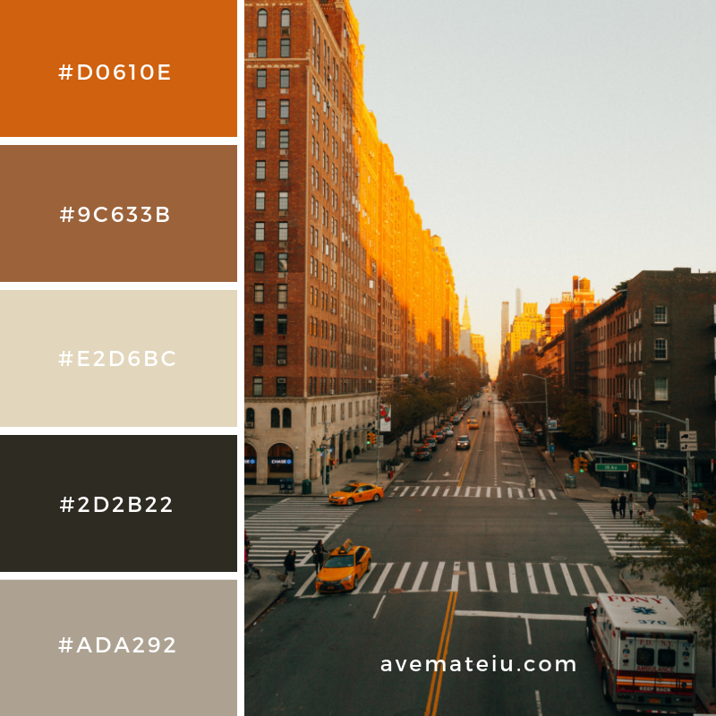 New Color Pallete on avemateiu.com: Color Palette 51 🎨 • • • #avemateiucolors #avemateiu #love #design #photos #designinspiration #designer #graphicdesign #colorinspiration #colors #instaphoto #colorpalette #moodboard #creative #instaart #colorgrading #brandidentity #artistsoninstagram #artwork #inspirationoftheday #fineart #branding #succes #beautiful #instadaily #bestoftheday #photooftheday #inspirational #colorful #avemateiudesign