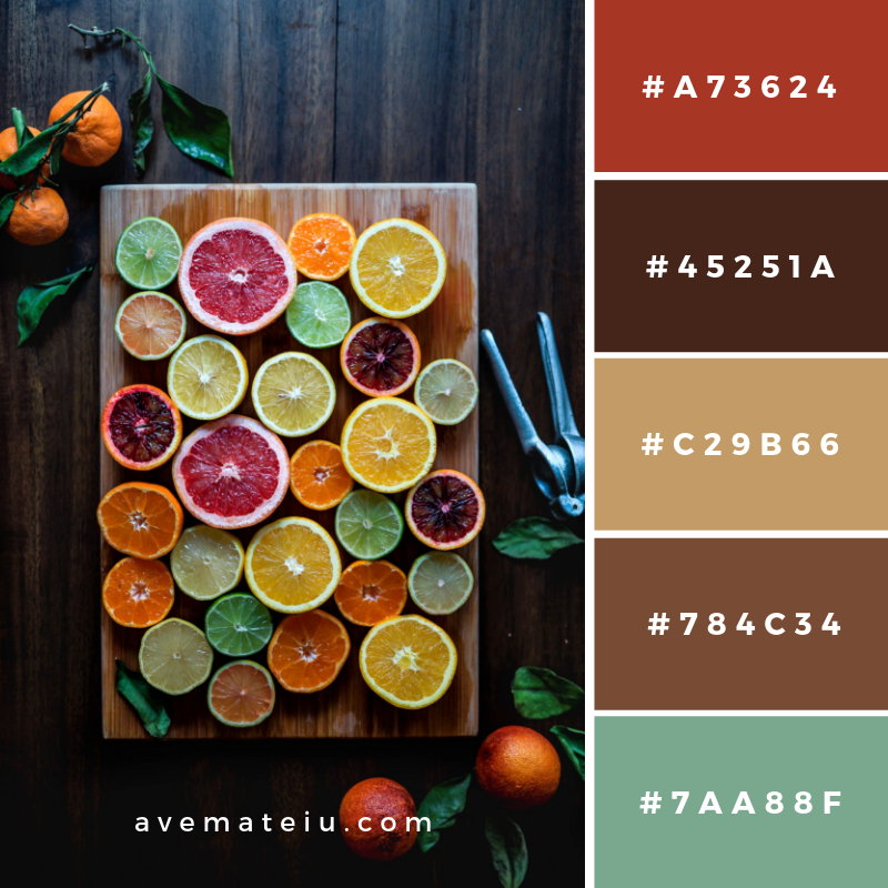 New Color Pallete on avemateiu.com: Color Palette 53 🎨 • • • #avemateiucolors #avemateiu #love #design #photos #designinspiration #designer #graphicdesign #colorinspiration #colors #instaphoto #colorpalette #moodboard #creative #instaart #colorgrading #brandidentity #artistsoninstagram #artwork #inspirationoftheday #fineart #branding #succes #beautiful #instadaily #bestoftheday #photooftheday #inspirational #colorful #avemateiudesign