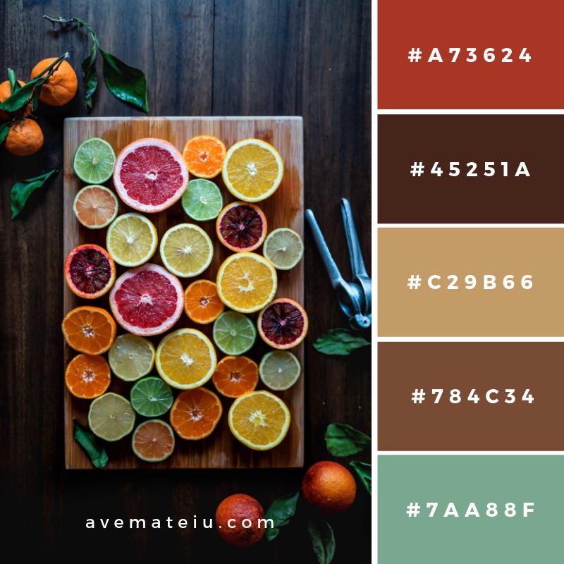 New Color Pallete on avemateiu.com: Color Palette 53 🎨 • • • #avemateiucolors #avemateiu #love #design #photos #designinspiration #designer #graphicdesign #colorinspiration #colors #instaphoto #colorpalette #moodboard #creative #instaart #colorgrading #brandidentity #artistsoninstagram #artwork #inspirationoftheday #fineart #branding #succes #beautiful #instadaily #bestoftheday #photooftheday #inspirational #colorful #avemateiudesign