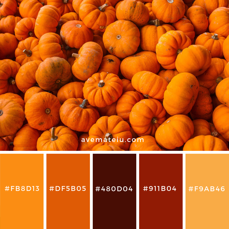 New Color Pallete on avemateiu.com: Color Palette 54 🎨 • • • #avemateiucolors #avemateiu #love #design #photos #designinspiration #designer #graphicdesign #colorinspiration #colors #instaphoto #colorpalette #moodboard #creative #instaart #colorgrading #brandidentity #artistsoninstagram #artwork #inspirationoftheday #fineart #branding #succes #beautiful #instadaily #bestoftheday #photooftheday #inspirational #colorful #avemateiudesign