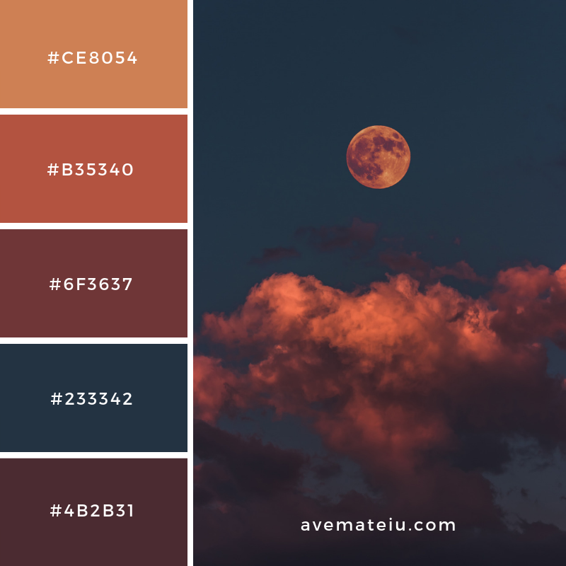 New Color Pallete on avemateiu.com: Color Palette 55 🎨 • • • #avemateiucolors #avemateiu #love #design #photos #designinspiration #designer #graphicdesign #colorinspiration #colors #instaphoto #colorpalette #moodboard #creative #instaart #colorgrading #brandidentity #artistsoninstagram #artwork #inspirationoftheday #fineart #branding #succes #beautiful #instadaily #bestoftheday #photooftheday #inspirational #colorful #avemateiudesign