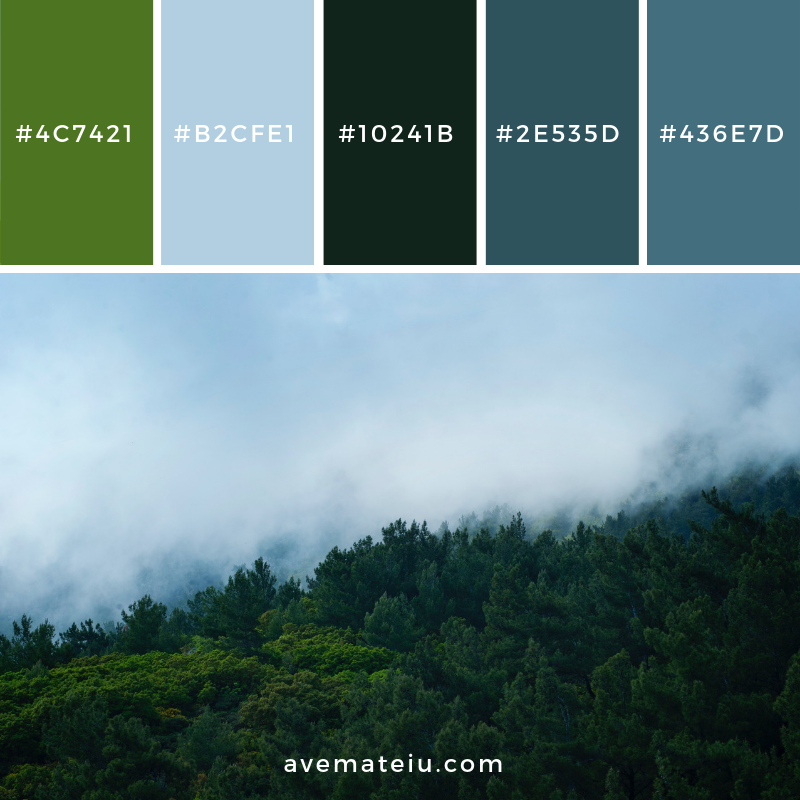 New Color Pallete on avemateiu.com: Color Palette 68 🎨 • • • #avemateiucolors #avemateiu #love #design #photos #designinspiration #designer #graphicdesign #colorinspiration #colors #instaphoto #colorpalette #moodboard #creative #instaart #colorgrading #brandidentity #artistsoninstagram #artwork #inspirationoftheday #fineart #branding #succes #beautiful #instadaily #bestoftheday #photooftheday #inspirational #colorful #avemateiudesign