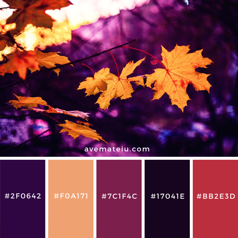 New Color Pallete on avemateiu.com: Color Palette 70 🎨 • • • #avemateiucolors #avemateiu #love #design #photos #designinspiration #designer #graphicdesign #colorinspiration #colors #instaphoto #colorpalette #moodboard #creative #instaart #colorgrading #brandidentity #artistsoninstagram #artwork #inspirationoftheday #fineart #branding #succes #beautiful #instadaily #bestoftheday #photooftheday #inspirational #colorful #avemateiudesign