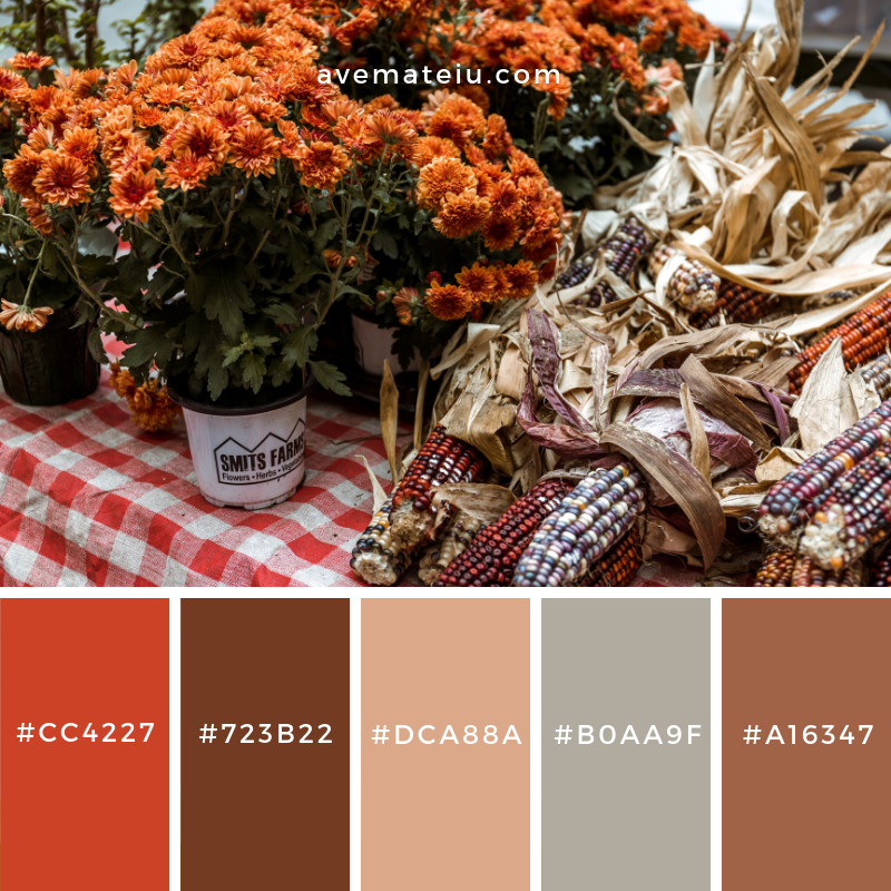 New Color Pallete on avemateiu.com: Color Palette 78 🎨 • • • #avemateiucolors #avemateiu #love #design #photos #designinspiration #designer #graphicdesign #colorinspiration #colors #instaphoto #colorpalette #moodboard #creative #instaart #colorgrading #brandidentity #artistsoninstagram #artwork #inspirationoftheday #fineart #branding #succes #beautiful #instadaily #bestoftheday #photooftheday #inspirational #colorful #avemateiudesign