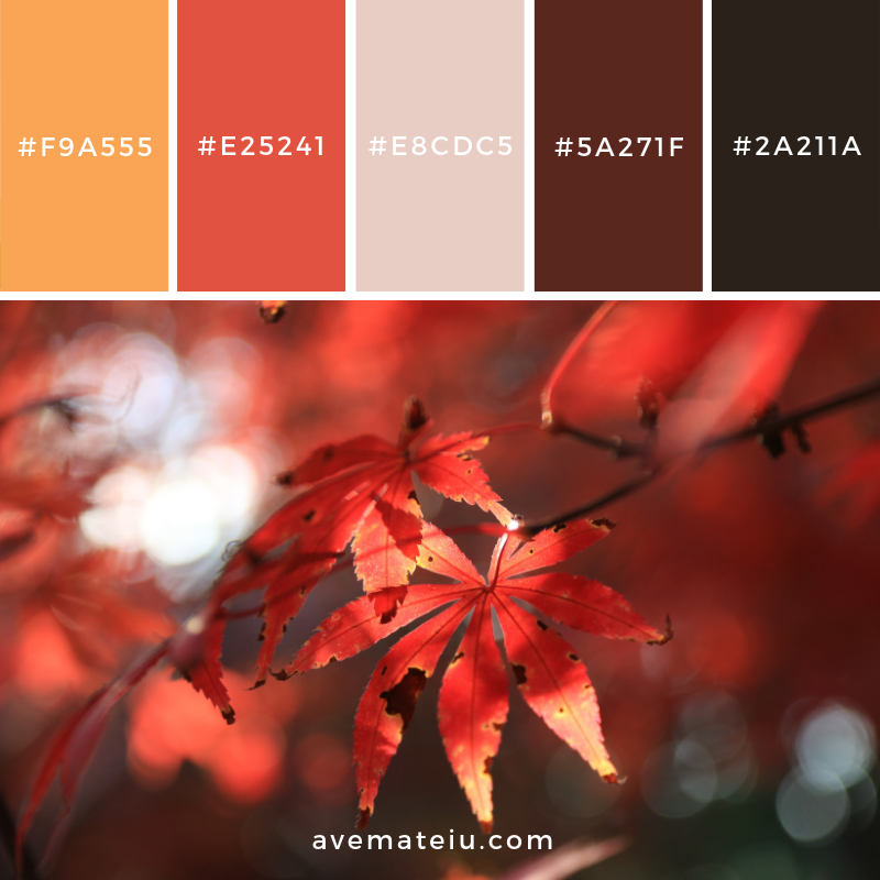 New Color Pallete on avemateiu.com: Color Palette 80 🎨 • • • #avemateiucolors #avemateiu #love #design #photos #designinspiration #designer #graphicdesign #colorinspiration #colors #instaphoto #colorpalette #moodboard #creative #instaart #colorgrading #brandidentity #artistsoninstagram #artwork #inspirationoftheday #fineart #branding #succes #beautiful #instadaily #bestoftheday #photooftheday #inspirational #colorful #avemateiudesign