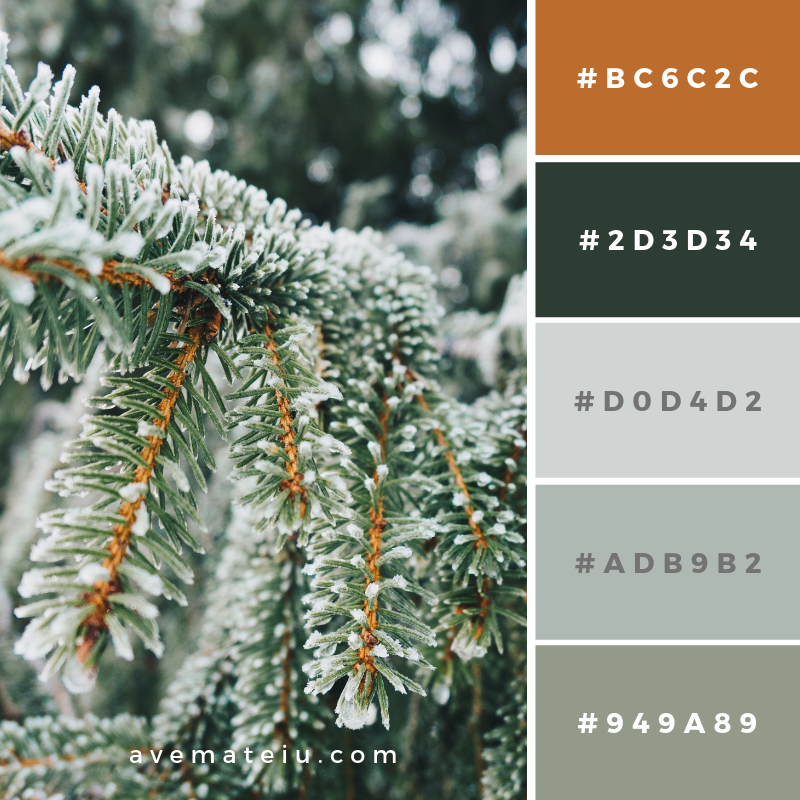 New Color Pallete on avemateiu.com: Color Palette 101 🎨 • • • #avemateiucolors #avemateiu #love #design #photos #designinspiration #designer #graphicdesign #colorinspiration #colors #instaphoto #colorpalette #moodboard #creative #instaart #colorgrading #brandidentity #artistsoninstagram #artwork #inspirationoftheday #fineart #branding #succes #beautiful #instadaily #bestoftheday #photooftheday #inspirational #colorful #avemateiudesign