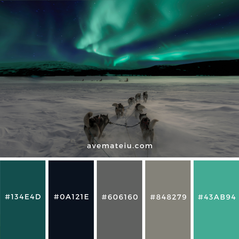 New Color Pallete on avemateiu.com: Color Palette 102 🎨 • • • #avemateiucolors #avemateiu #love #design #photos #designinspiration #designer #graphicdesign #colorinspiration #colors #instaphoto #colorpalette #moodboard #creative #instaart #colorgrading #brandidentity #artistsoninstagram #artwork #inspirationoftheday #fineart #branding #succes #beautiful #instadaily #bestoftheday #photooftheday #inspirational #colorful #avemateiudesign