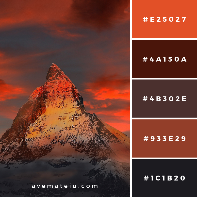 New Color Pallete on avemateiu.com: Color Palette 105 🎨 • • • #avemateiucolors #avemateiu #love #design #photos #designinspiration #designer #graphicdesign #colorinspiration #colors #instaphoto #colorpalette #moodboard #creative #instaart #colorgrading #brandidentity #artistsoninstagram #artwork #inspirationoftheday #fineart #branding #succes #beautiful #instadaily #bestoftheday #photooftheday #inspirational #colorful #avemateiudesign