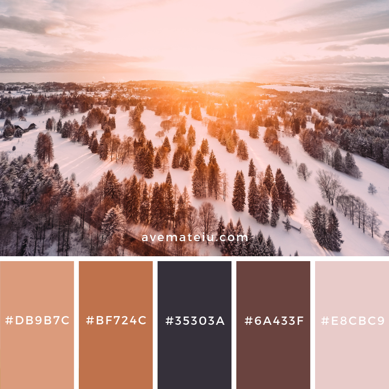 New Color Pallete on avemateiu.com: Color Palette 106 🎨 • • • #avemateiucolors #avemateiu #love #design #photos #designinspiration #designer #graphicdesign #colorinspiration #colors #instaphoto #colorpalette #moodboard #creative #instaart #colorgrading #brandidentity #artistsoninstagram #artwork #inspirationoftheday #fineart #branding #succes #beautiful #instadaily #bestoftheday #photooftheday #inspirational #colorful #avemateiudesign