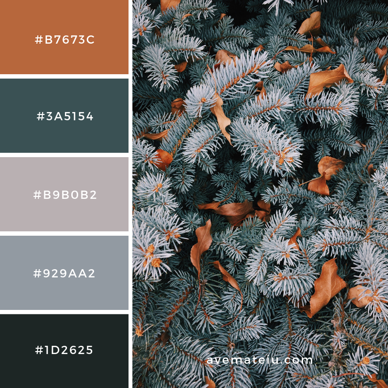 New Color Pallete on avemateiu.com: Color Palette 107 🎨 • • • #avemateiucolors #avemateiu #love #design #photos #designinspiration #designer #graphicdesign #colorinspiration #colors #instaphoto #colorpalette #moodboard #creative #instaart #colorgrading #brandidentity #artistsoninstagram #artwork #inspirationoftheday #fineart #branding #succes #beautiful #instadaily #bestoftheday #photooftheday #inspirational #colorful #avemateiudesign