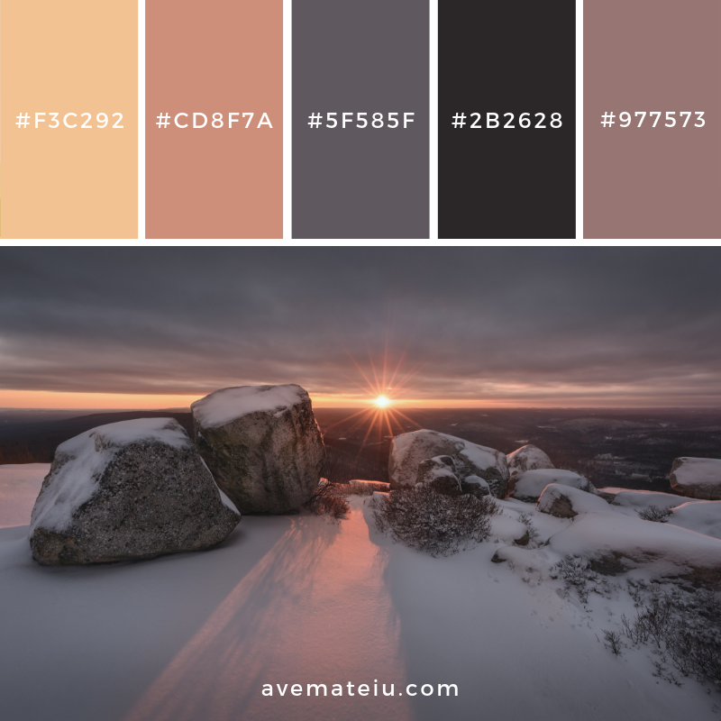 New Color Pallete on avemateiu.com: Color Palette 112 🎨 • • • #avemateiucolors #avemateiu #love #design #photos #designinspiration #designer #graphicdesign #colorinspiration #colors #instaphoto #colorpalette #moodboard #creative #instaart #colorgrading #brandidentity #artistsoninstagram #artwork #inspirationoftheday #fineart #branding #succes #beautiful #instadaily #bestoftheday #photooftheday #inspirational #colorful #avemateiudesign