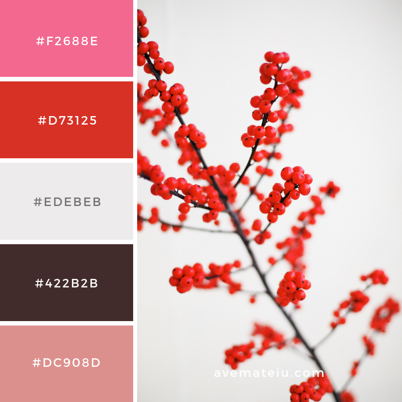 New Color Pallete on avemateiu.com: Color Palette 119 🎨 • • • #avemateiucolors #avemateiu #love #design #photos #designinspiration #designer #graphicdesign #colorinspiration #colors #instaphoto #colorpalette #moodboard #creative #instaart #colorgrading #brandidentity #artistsoninstagram #artwork #inspirationoftheday #fineart #branding #succes #beautiful #instadaily #bestoftheday #photooftheday #inspirational #colorful #avemateiudesign