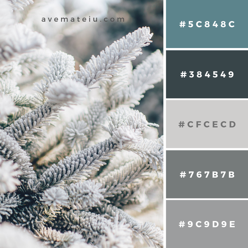 New Color Pallete on avemateiu.com: Color Palette 121 🎨 • • • #avemateiucolors #avemateiu #love #design #photos #designinspiration #designer #graphicdesign #colorinspiration #colors #instaphoto #colorpalette #moodboard #creative #instaart #colorgrading #brandidentity #artistsoninstagram #artwork #inspirationoftheday #fineart #branding #succes #beautiful #instadaily #bestoftheday #photooftheday #inspirational #colorful #avemateiudesign