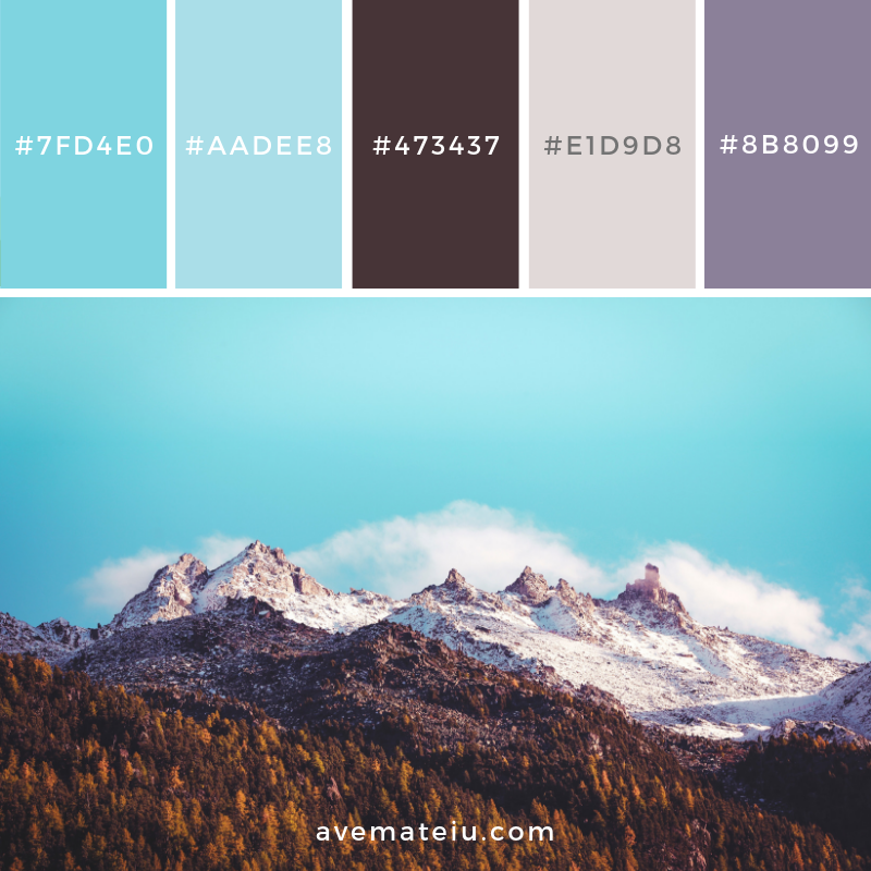 New Color Pallete on avemateiu.com: Color Palette 124 🎨 • • • #avemateiucolors #avemateiu #love #design #photos #designinspiration #designer #graphicdesign #colorinspiration #colors #instaphoto #colorpalette #moodboard #creative #instaart #colorgrading #brandidentity #artistsoninstagram #artwork #inspirationoftheday #fineart #branding #succes #beautiful #instadaily #bestoftheday #photooftheday #inspirational #colorful #avemateiudesign