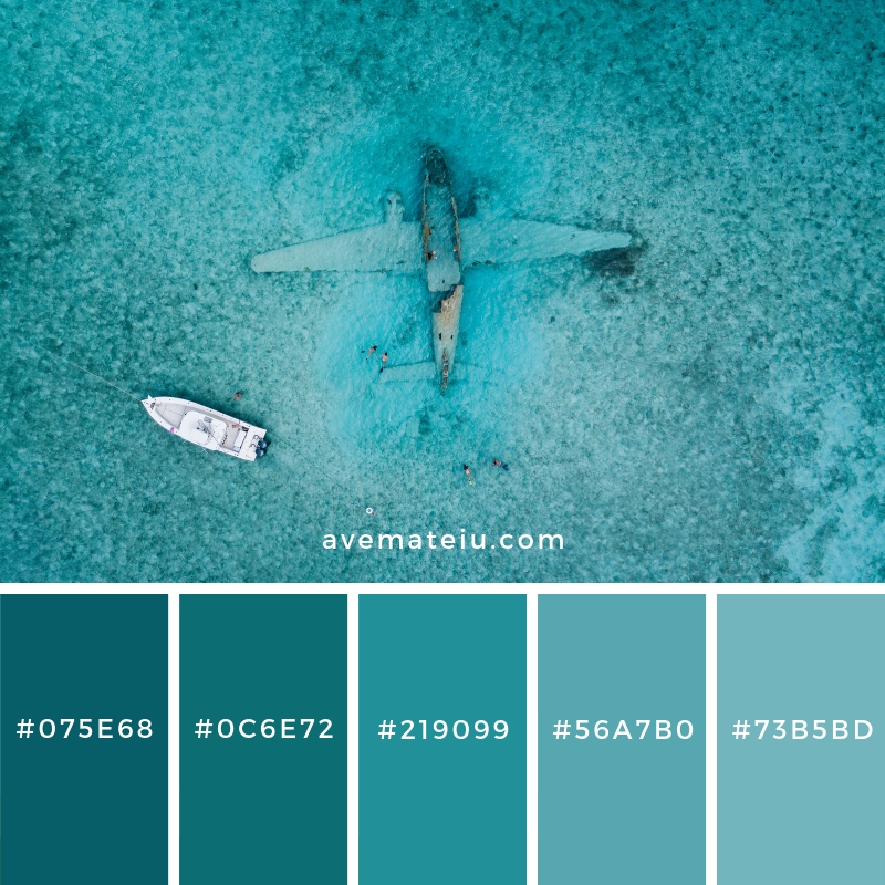 New Color Pallete on avemateiu.com: Color Palette 126 🎨 • • • #avemateiucolors #avemateiu #love #design #photos #designinspiration #designer #graphicdesign #colorinspiration #colors #instaphoto #colorpalette #moodboard #creative #instaart #colorgrading #brandidentity #artistsoninstagram #artwork #inspirationoftheday #fineart #branding #succes #beautiful #instadaily #bestoftheday #photooftheday #inspirational #colorful #avemateiudesign