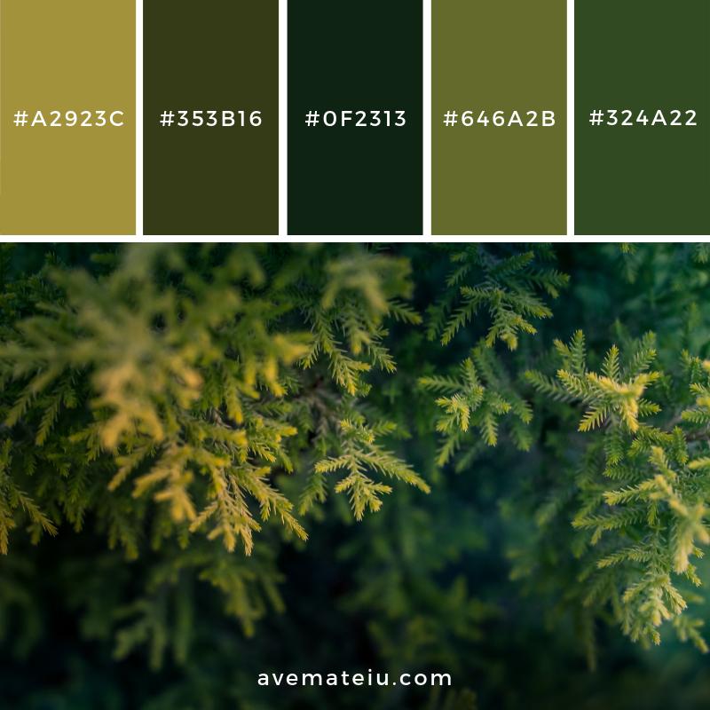 New Color Pallete on avemateiu.com: Color Palette 128 🎨 • • • #avemateiucolors #avemateiu #love #design #photos #designinspiration #designer #graphicdesign #colorinspiration #colors #instaphoto #colorpalette #moodboard #creative #instaart #colorgrading #brandidentity #artistsoninstagram #artwork #inspirationoftheday #fineart #branding #succes #beautiful #instadaily #bestoftheday #photooftheday #inspirational #colorful #avemateiudesign