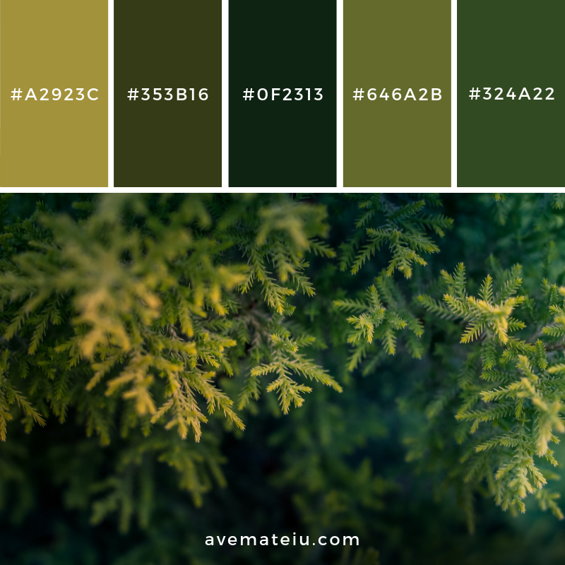 New Color Pallete on avemateiu.com: Color Palette 128 🎨 • • • #avemateiucolors #avemateiu #love #design #photos #designinspiration #designer #graphicdesign #colorinspiration #colors #instaphoto #colorpalette #moodboard #creative #instaart #colorgrading #brandidentity #artistsoninstagram #artwork #inspirationoftheday #fineart #branding #succes #beautiful #instadaily #bestoftheday #photooftheday #inspirational #colorful #avemateiudesign