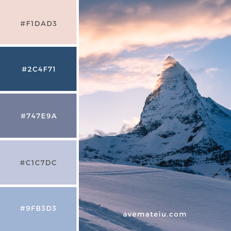 New Color Pallete on avemateiu.com: Color Palette 131 🎨 • • • #avemateiucolors #avemateiu #love #design #photos #designinspiration #designer #graphicdesign #colorinspiration #colors #instaphoto #colorpalette #moodboard #creative #instaart #colorgrading #brandidentity #artistsoninstagram #artwork #inspirationoftheday #fineart #branding #succes #beautiful #instadaily #bestoftheday #photooftheday #inspirational #colorful #avemateiudesign