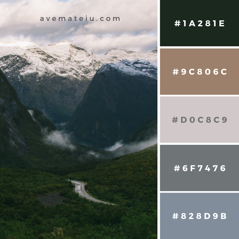 New Color Pallete on avemateiu.com: Color Palette 133 🎨 • • • #avemateiucolors #avemateiu #love #design #photos #designinspiration #designer #graphicdesign #colorinspiration #colors #instaphoto #colorpalette #moodboard #creative #instaart #colorgrading #brandidentity #artistsoninstagram #artwork #inspirationoftheday #fineart #branding #succes #beautiful #instadaily #bestoftheday #photooftheday #inspirational #colorful #avemateiudesign