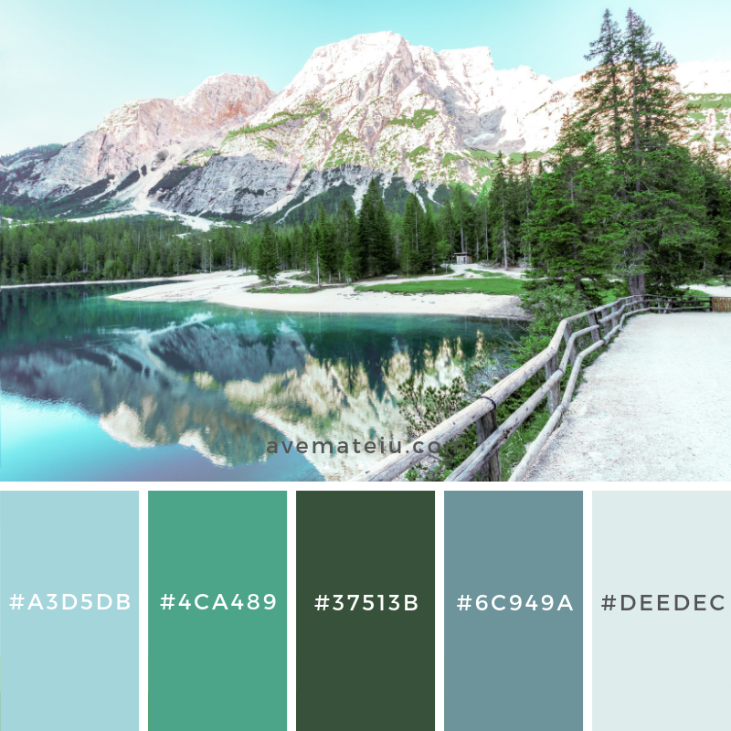 New Color Pallete on avemateiu.com: Color Palette 138 🎨 • • • #avemateiucolors #avemateiu #love #design #photos #designinspiration #designer #graphicdesign #colorinspiration #colors #instaphoto #colorpalette #moodboard #creative #instaart #colorgrading #brandidentity #artistsoninstagram #artwork #inspirationoftheday #fineart #branding #succes #beautiful #instadaily #bestoftheday #photooftheday #inspirational #colorful #avemateiudesign