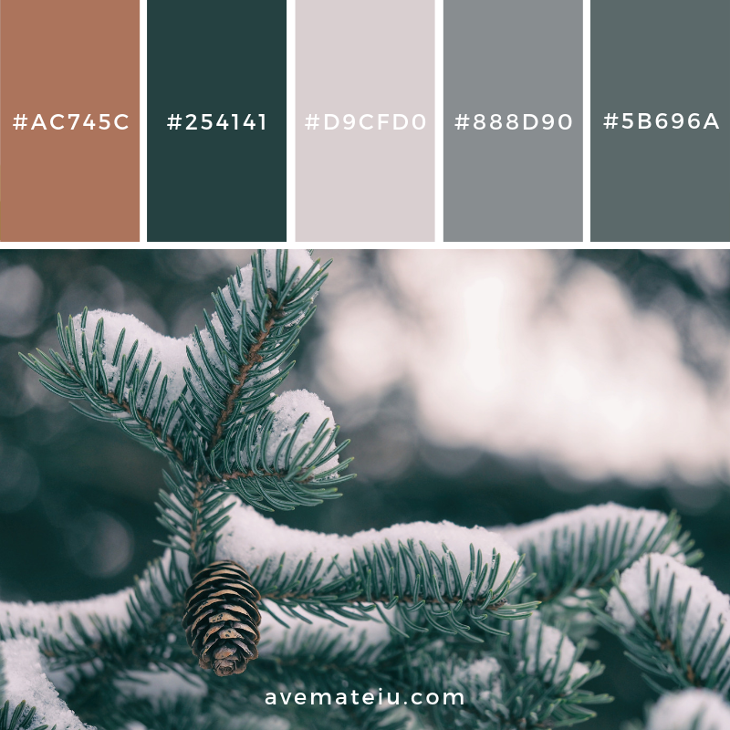 New Color Pallete on avemateiu.com: Color Palette 140 🎨 • • • #avemateiucolors #avemateiu #love #design #photos #designinspiration #designer #graphicdesign #colorinspiration #colors #instaphoto #colorpalette #moodboard #creative #instaart #colorgrading #brandidentity #artistsoninstagram #artwork #inspirationoftheday #fineart #branding #succes #beautiful #instadaily #bestoftheday #photooftheday #inspirational #colorful #avemateiudesign