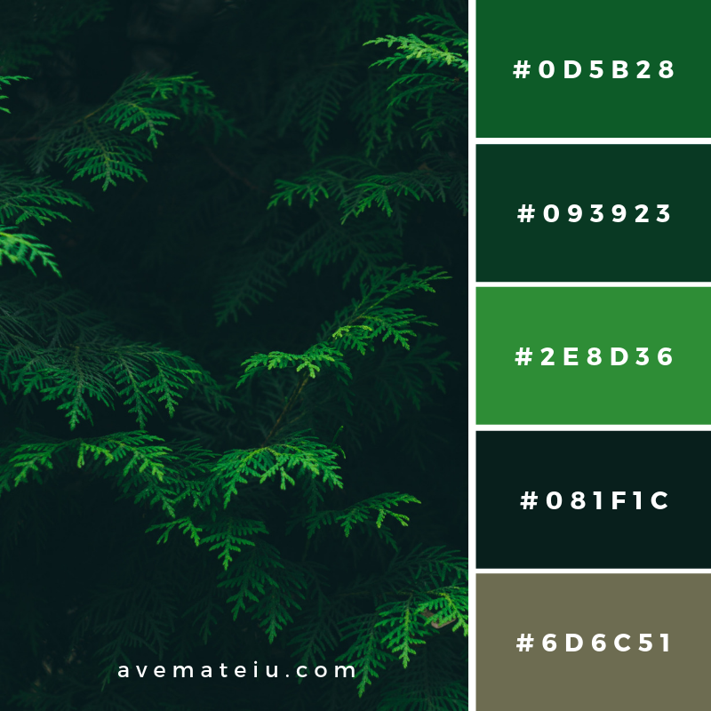 New Color Pallete on avemateiu.com: Color Palette 145 🎨 • • • #avemateiucolors #avemateiu #love #design #photos #designinspiration #designer #graphicdesign #colorinspiration #colors #instaphoto #colorpalette #moodboard #creative #instaart #colorgrading #brandidentity #artistsoninstagram #artwork #inspirationoftheday #fineart #branding #succes #beautiful #instadaily #bestoftheday #photooftheday #inspirational #colorful #avemateiudesign